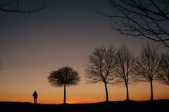 一个人的剪影和在日落的一棵树 库存照片