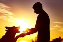一个人的剪影有狗在领域在日落,宠物给爪子的他的所有者,活跃休闲的概念和友谊的 免版税库存照片