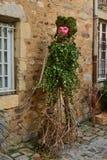 一个人的图从常春藤的在庭院里,风景设计 图库摄影