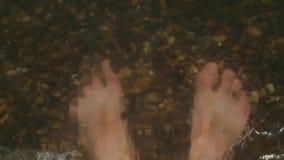 一个人的腿pebbled海滨的在水,特写镜头中 影视素材