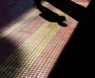 一个人的阴影和在patterened边路的一个专栏 库存照片