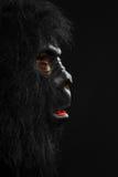 一个人的画象有大猩猩万圣夜服装的 免版税库存照片