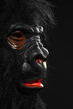 一个人的画象有大猩猩服装的 库存照片