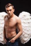 一个人的画象有天使的飞过 库存图片