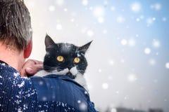 一个人运载在肩膀的一只冻猫 从ba的看法 库存照片