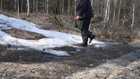 一个人通过下午的春天森林走,进入距离 股票视频