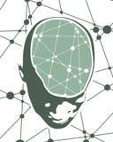 一个人头的例证有脑子的 库存图片