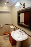 一个休息室的内部有洗手间、水槽和镜子的在灰色米黄 库存照片