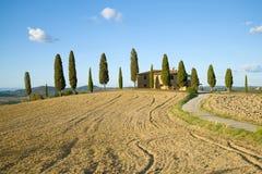 一个传统农村风景在一晴朗的9月天 意大利托斯卡纳 免版税图库摄影