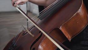 一个低音提琴的特写镜头与无意识而不停地拨弄弓的,使用在仪器的女性手 股票录像