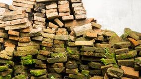 一个倒塌的未使用的brik墙壁青苔 库存照片
