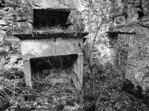 一个倒塌的被放弃的房子的内部长得太大的森林地wi的 库存照片
