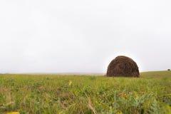 一个倾斜的绿色领域的圆的干草堆在多云天气 免版税图库摄影