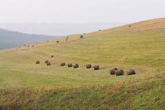 一个倾斜的绿色领域的圆的干草堆在多云天气 免版税库存图片