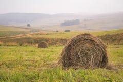 一个倾斜的绿色领域的圆的干草堆在多云天气 库存照片