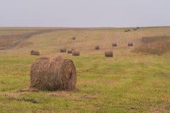 一个倾斜的绿色领域的圆的干草堆在多云天气 库存图片