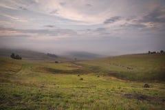 一个倾斜的绿色领域的圆的干草堆在多云天气 免版税库存照片