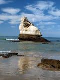 一个偏僻的岩石在海洋 库存照片