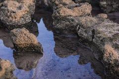 一个偏僻的岩石 库存图片