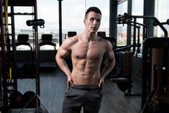 一个健身肌肉人的画象 图库摄影