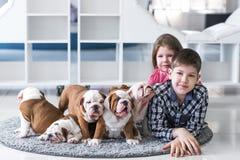 一个兄弟和姐妹的画象有逗人喜爱的小狗的在地毯 免版税图库摄影