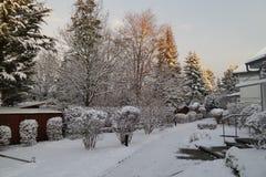 一个公园在冬天 免版税库存照片