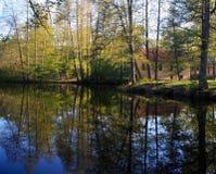 一个公园在瑞典 免版税库存照片