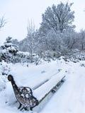 一个公园的看法在冬天 库存图片
