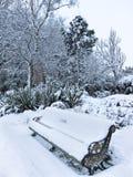 一个公园的看法在冬天 免版税图库摄影