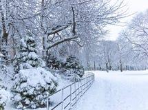 一个公园的看法在冬天 免版税库存图片