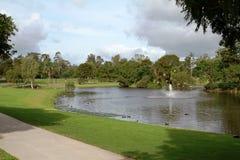一个公园设置在东南昆士兰 库存图片