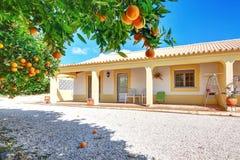 一个典型的房子为与橙色庭院的暑假。 免版税库存照片