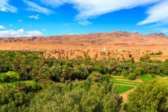 一个典型的摩洛哥巴巴里人村庄的风景有绿洲的在 库存照片