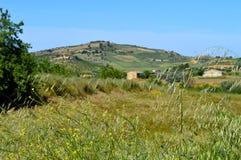 一个典型的西西里人的乡下风景的背景,马扎里诺,卡尔塔尼塞塔,意大利,欧洲 免版税库存照片
