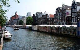 一个典型的阿姆斯特丹花市场 免版税库存照片