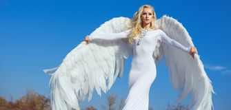 一个典雅,白肤金发的天使的画象 免版税库存图片