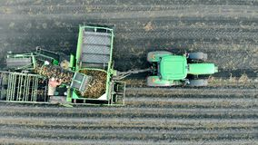 一个农业机器的顶视图有驾驶通过土豆农田的工作者的 股票录像