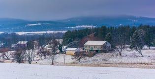 一个农场和Piegon小山的冬天视图,在春天树丛附近, P 库存图片