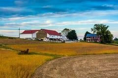 一个农场在农村兰开斯特县,宾夕法尼亚 免版税图库摄影