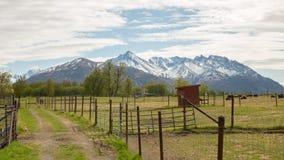 一个农场在山的背景,春天中 免版税库存图片