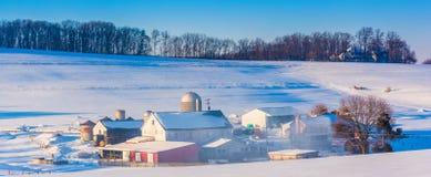 一个农场的冬天视图在农村约克县,宾夕法尼亚 免版税库存图片