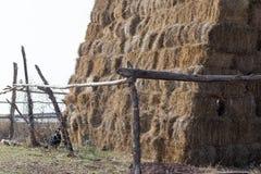 一个农场的干草堆本质上 库存图片