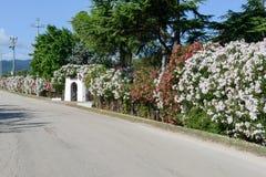 一个农村房子的进口普利亚的 免版税库存图片