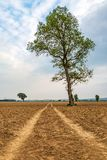 一个农村苏克塞斯视图 免版税库存图片