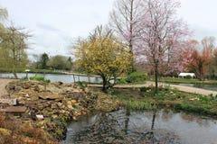 一个农村英国旅游村庄风景的鳟鱼农场 库存图片