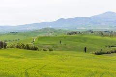 一个农村风景的看法 库存照片