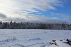 一个冬天场面在看横跨往森林的一个领域和与一柴堆的一间客舱的一部分阴天在前景 免版税库存图片