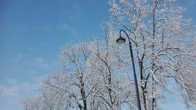一个冬天是乐趣 库存图片