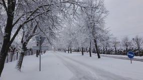 一个冬天是乐趣 库存照片