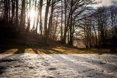 一个冬天风景的水平的看法与恶劣的雪的在Ital 免版税库存照片